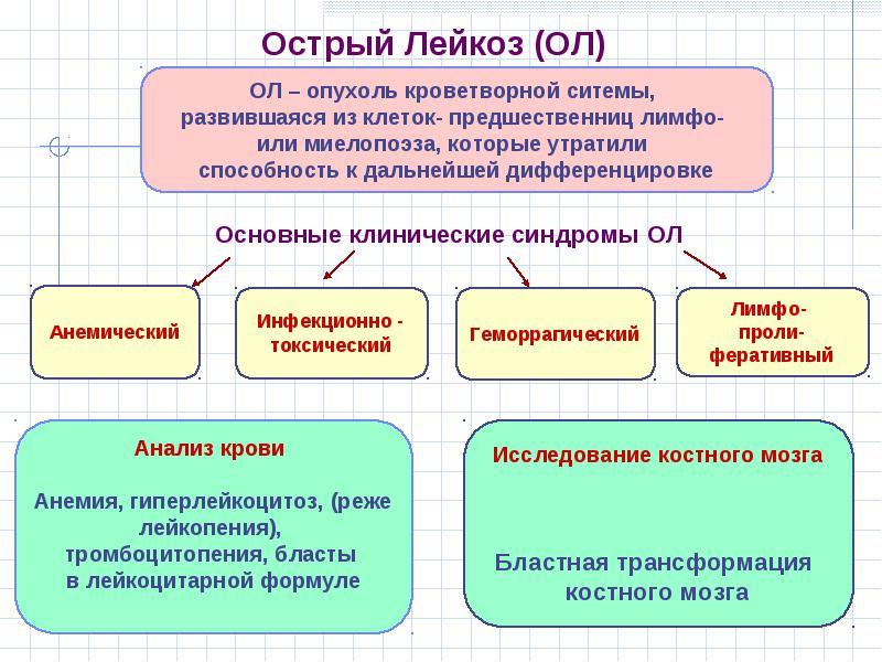 Лейкоз у взрослых   Рак - лечение и профилактика