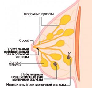 как долго проявляется аллергия