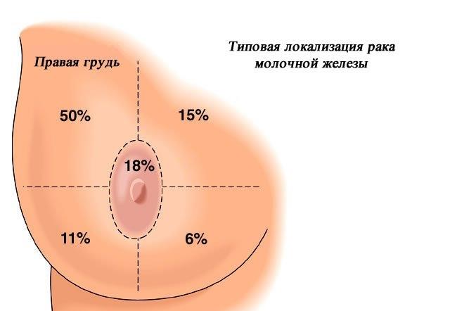 метод похудения ковалькова